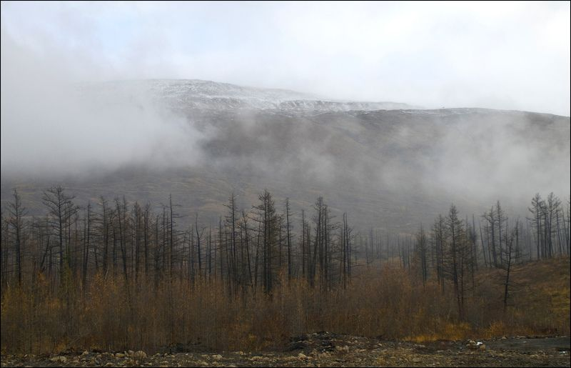 Таймыр,октябрь,осень Осени серостьphoto preview