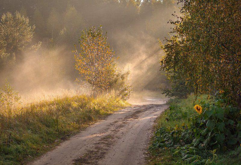 Осеннее утроphoto preview