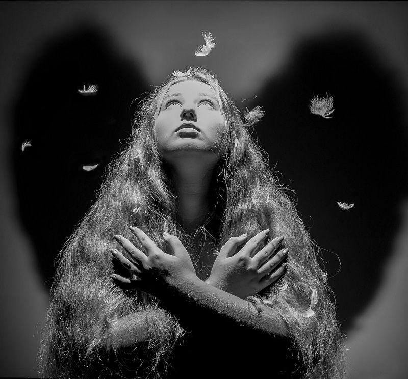 girl hope white black hair, conceptual, wings, angel, demon, feathers, soul, claws, metamorphosis, contradiction m e t a m o r p h o s e sphoto preview