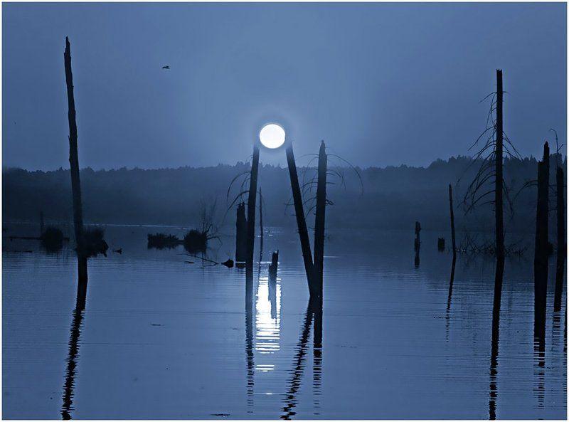 пейзаж,пруд,коллаж,туман Сказочный мир Вверх-Удинского прудаphoto preview