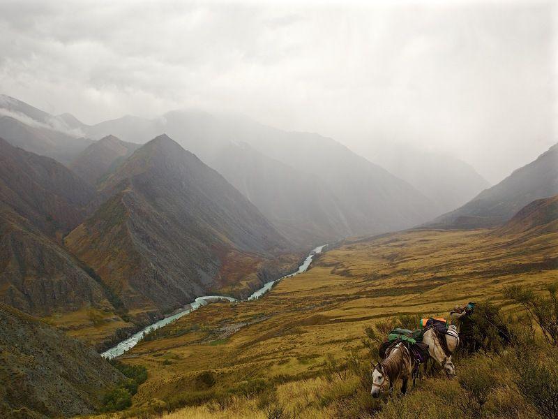 аргут, горный алтай Окладной дождь в горах.photo preview