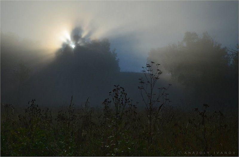 туман, утро, лучи, пейзаж Утро туманноеphoto preview