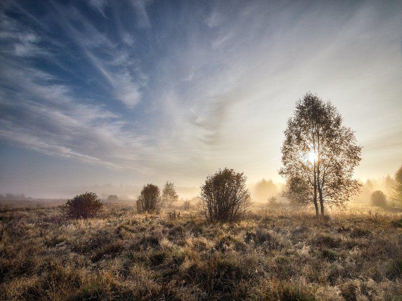 Яркое утро осеннего дняphoto preview