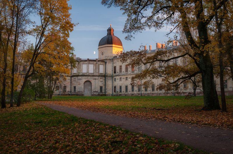 осень, листья, дворец, золотая осень, парк, вечер, сумерки Сумерки октябряphoto preview