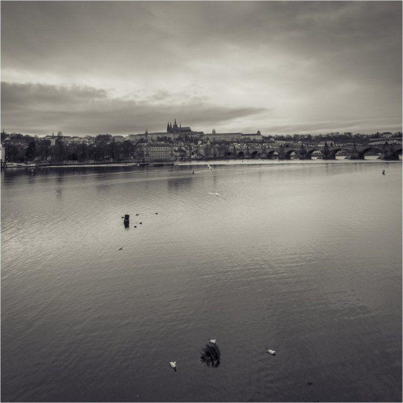 Прага, Чехия, Ретро, чб, Европа, река, мост, храм, театр, влтава, церковь,елка, новый год, photo preview