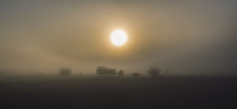 SUN in FOGphoto preview