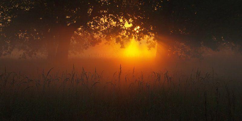 Где просыпается солнцеphoto preview