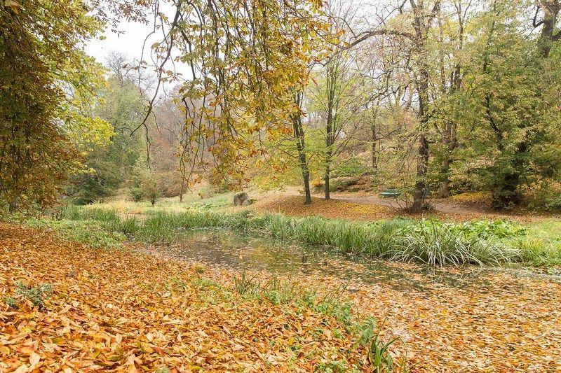 осень, парк, Умань, Софиевка, листья, ручей, скамейка В парке...photo preview