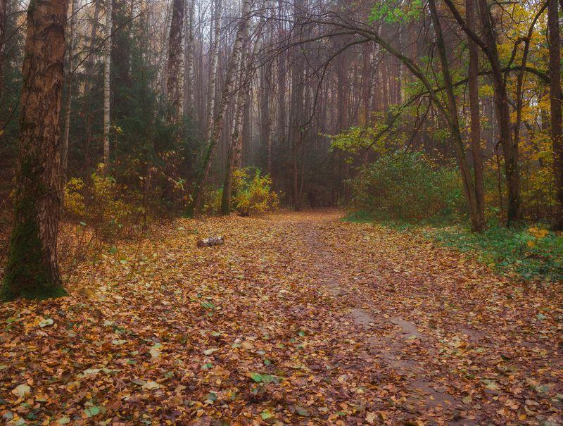 Осень Осенняя пораphoto preview