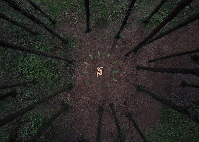 лес, девушка, ню, портрет ***photo preview