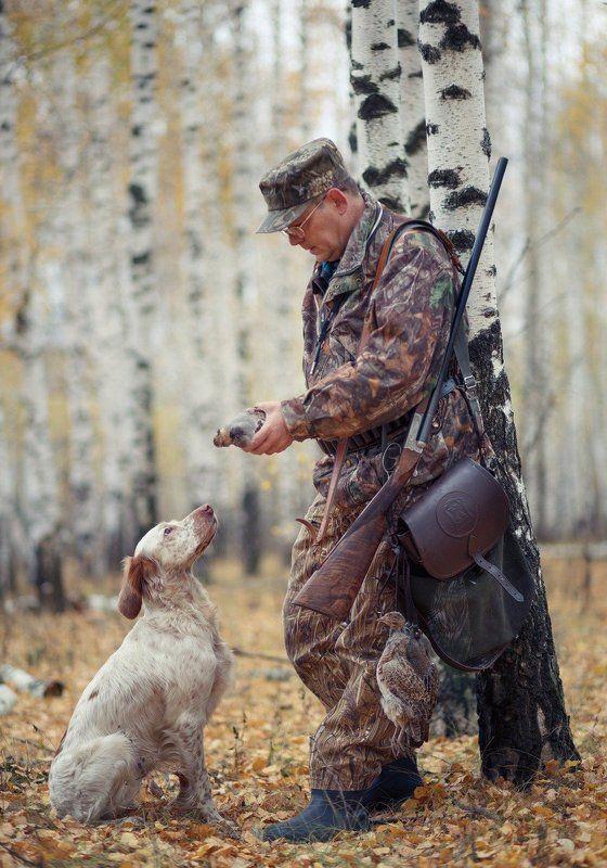 охота, охотник, собака, осень, добыча, английский сеттер, легавая собака Охотничья пораphoto preview