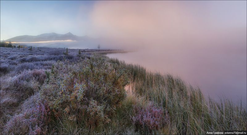 алтай, горы, горный алтай, улаганский перевал, киделю, утро, осень, аня графова Рассвет, туман, изморозь...photo preview