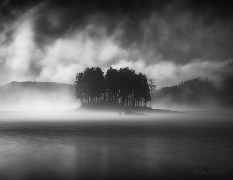 black and white, BW, B&W, tree, water, lake Morning evaporationsphoto preview