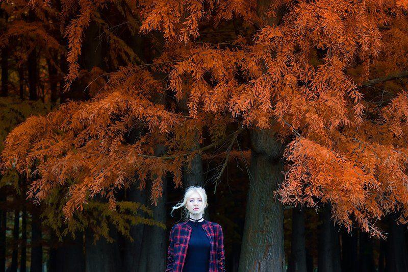 Dreamfallphoto preview