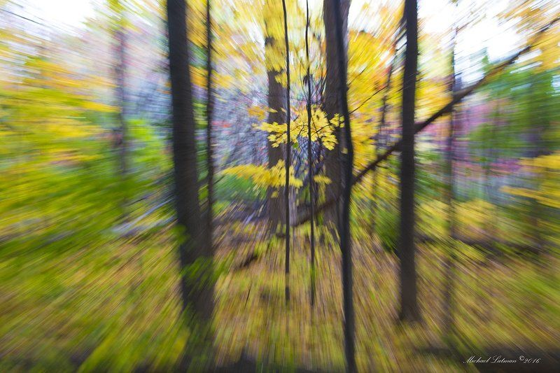 Осень.Краски времени.photo preview