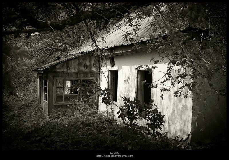 дом природа дача Заброшенный домphoto preview