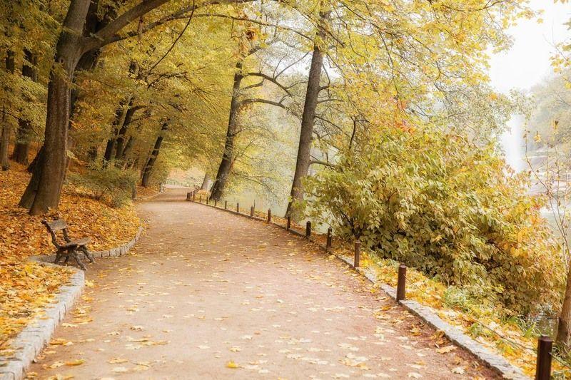 осень, парк, Умань, Софиевка, листья, аллея, скамейка Осенний променад...photo preview