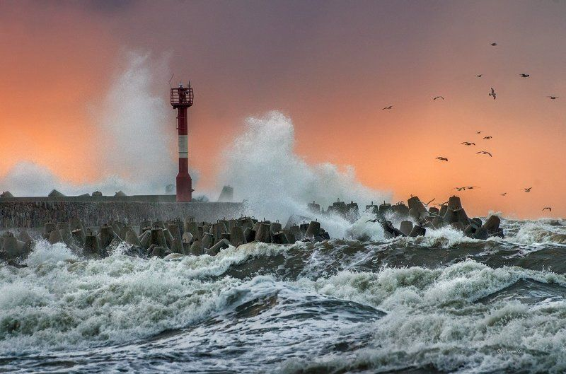 море, балтика, балтийск, шторм, На Балтике - штормphoto preview