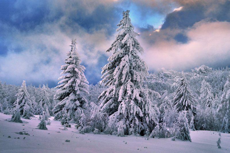Нашествие снегаphoto preview