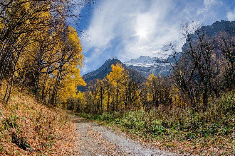 вершины, горы, домбай, золотая осень, кавказ, осенние краски, пейзаж, россия, снежные вершины Золотая осень в горах Домбаяphoto preview