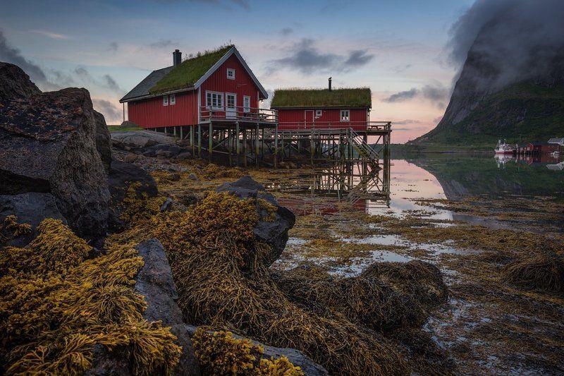 norway, норвегия, море, путешествие, lofoten, лофотены Fisherman\'s Morning.photo preview