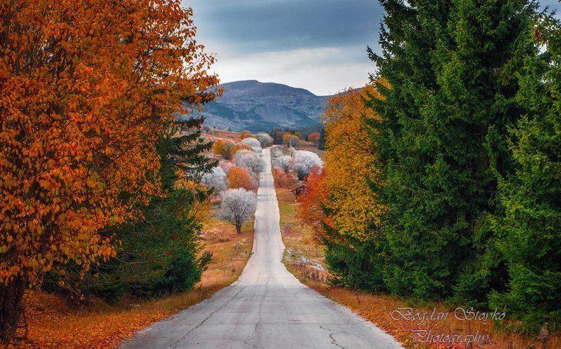 Любимите пътища водят към райските местаphoto preview