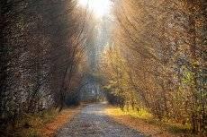 Путь в Заречный парк.