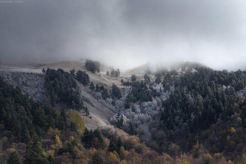 кавказ, северный кавказ, осень, архыз Frosty Autumnphoto preview