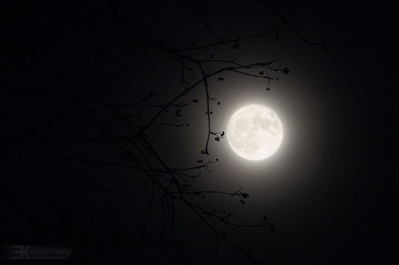 SuperMoonphoto preview