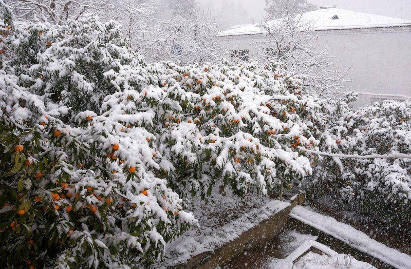 Когда в Абхазию заглянула зимаphoto preview
