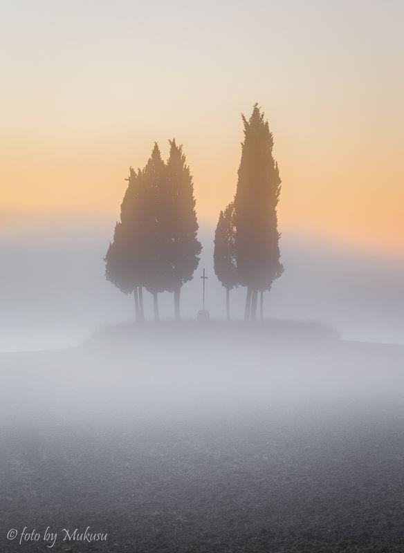 италия, тоскана, пейзаж, утро, туман, Утро Туманноеphoto preview