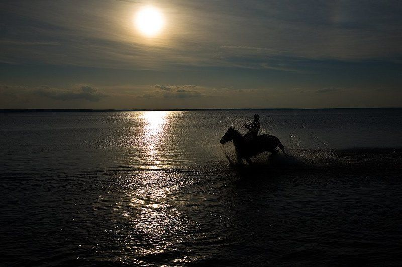 купание, конь, петров-водкин Фото навеянное творчеством Кузьмы Петрова-Водкина... или купание, условно красного, коня...photo preview