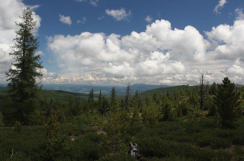 На Улаганском перевале.Облака.photo preview