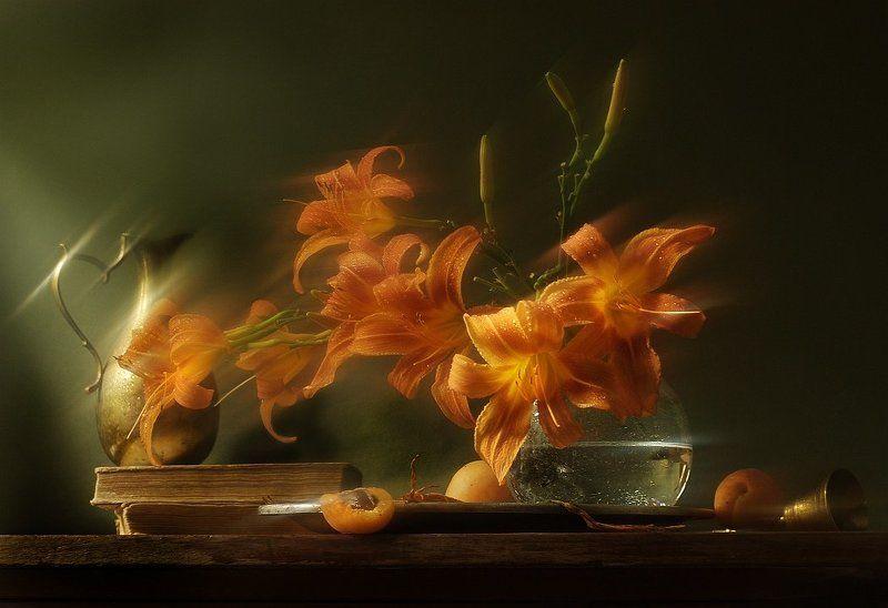 утро, лилия, радость Радостное утроphoto preview