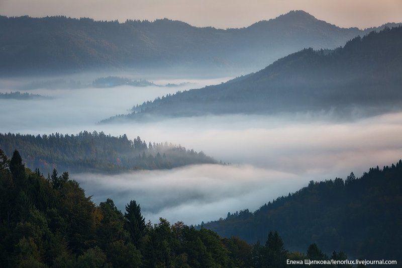 Туманная река. Словенияphoto preview