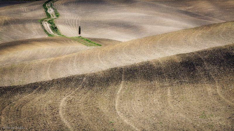 италия, тоскана, пейзаж, утро, путешествия Холмы Тосканыphoto preview
