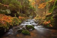 Small river in autumn colors