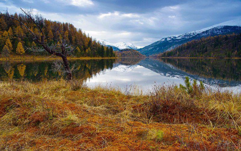 алтай озеро кок-кёль утро рассвет вода горы Утро на озере Кок-Кёльphoto preview