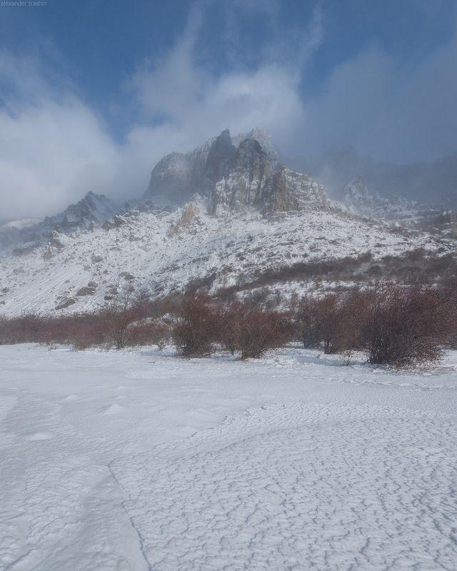 крым, демерджи, зима Winter Moodphoto preview