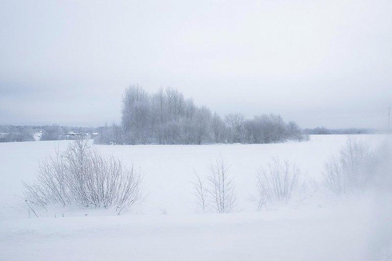 Вологодская зимаphoto preview