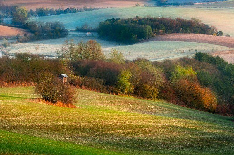 Моравия, волны, поля, осень, деревья, утро, рассвет, ноябрь Лоскутки зимы и осениphoto preview