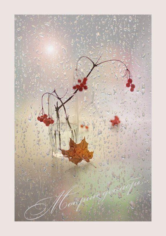 Зима декабрь Мокрый декабрь.../и у зимы случаются слезы/photo preview