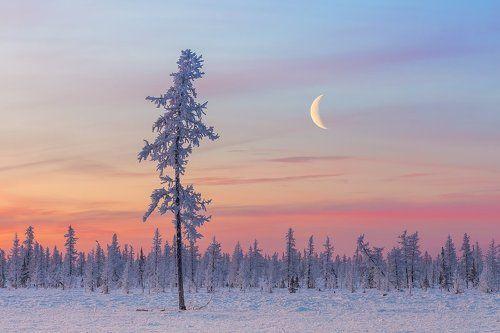 Холодный северный месяц