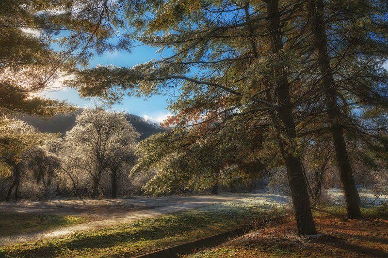 Декабрьский инейphoto preview
