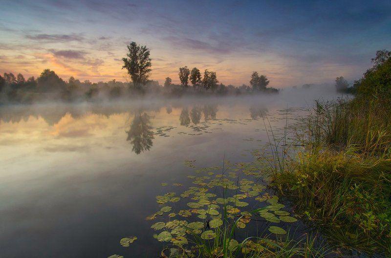 Рассвет на старом озереphoto preview