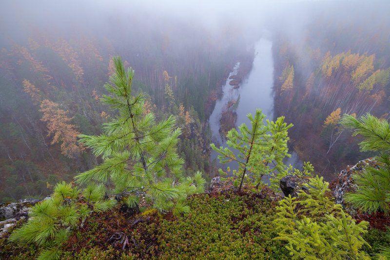 осень, урал, лес С высоты ивдельских скалphoto preview