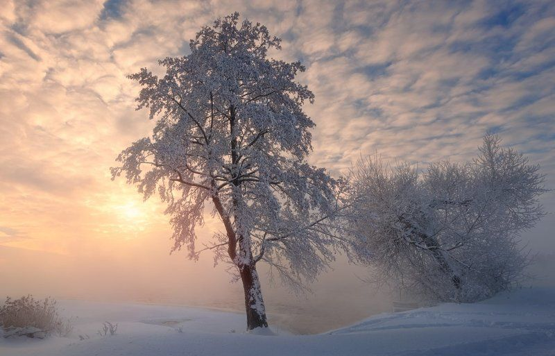 Зимнее озероphoto preview