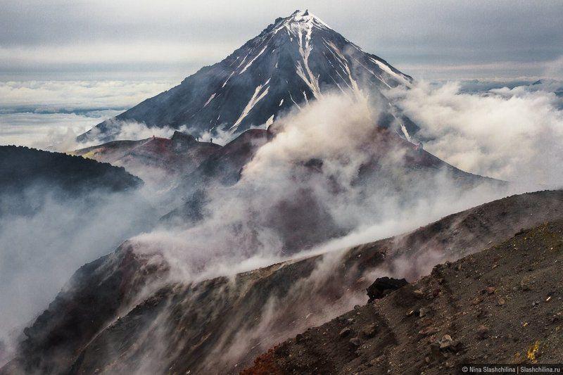 вулкан,Авачинский,Камчатка,дым,вершина,пар,извержение Вихри на Авачеphoto preview