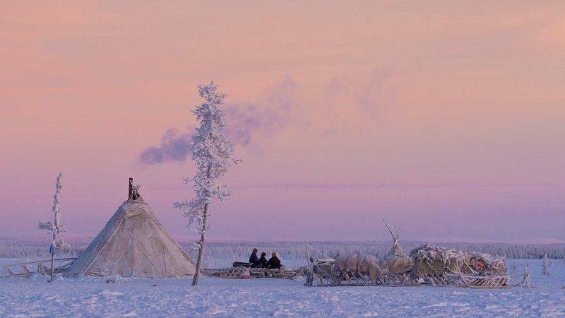 ямал, зима Одни в тундреphoto preview