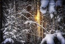 Взгляд солнца.